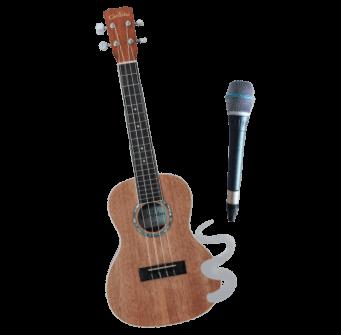 Gitarre und Mikrofon